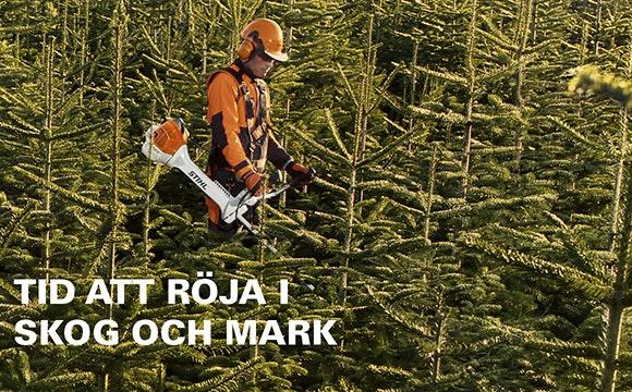 Ta din skog på allvar. Det gör vi.